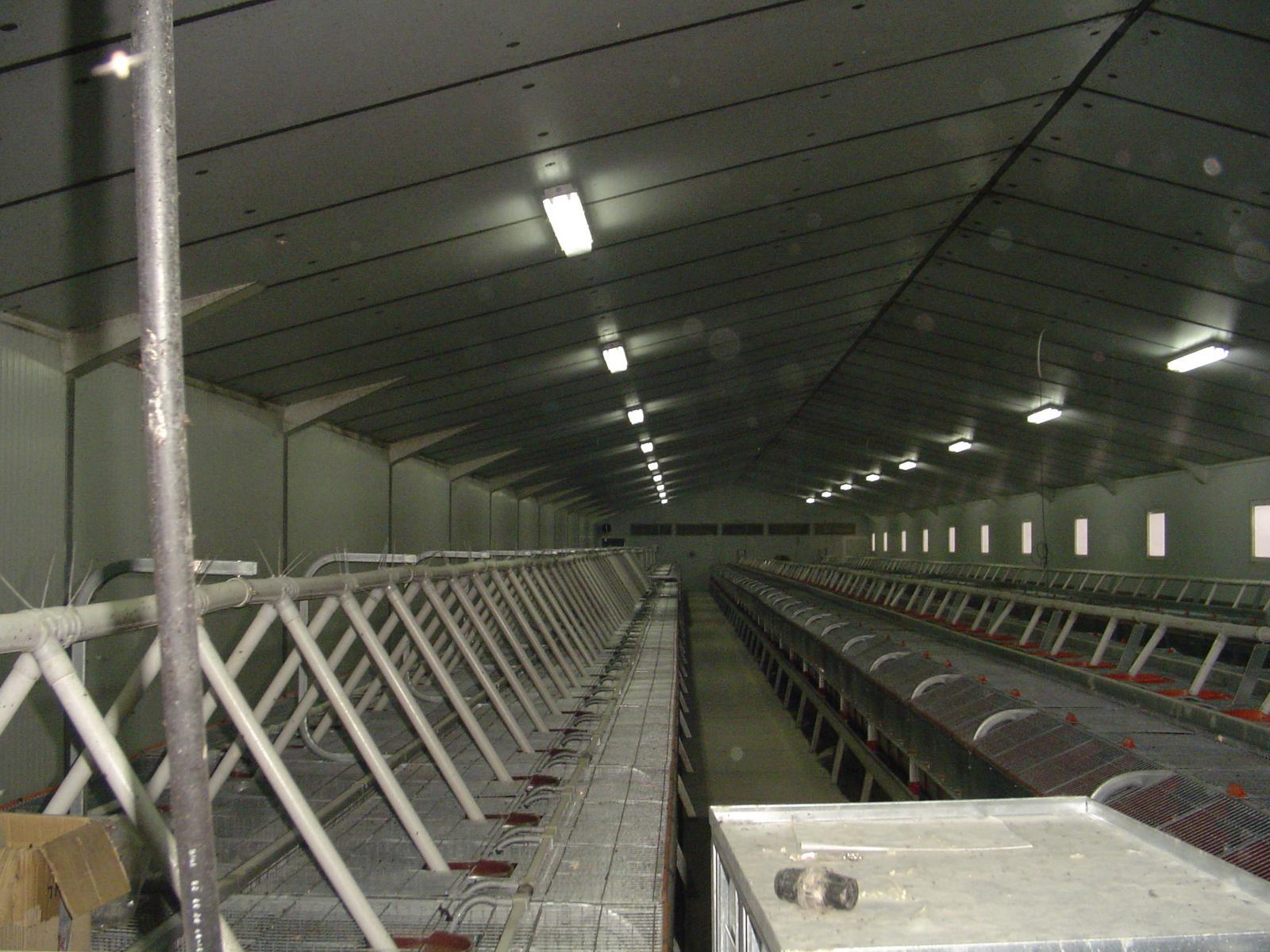 granja cunicola gurrea de gallego 05